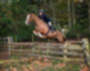 Nikki jumping website.jpg