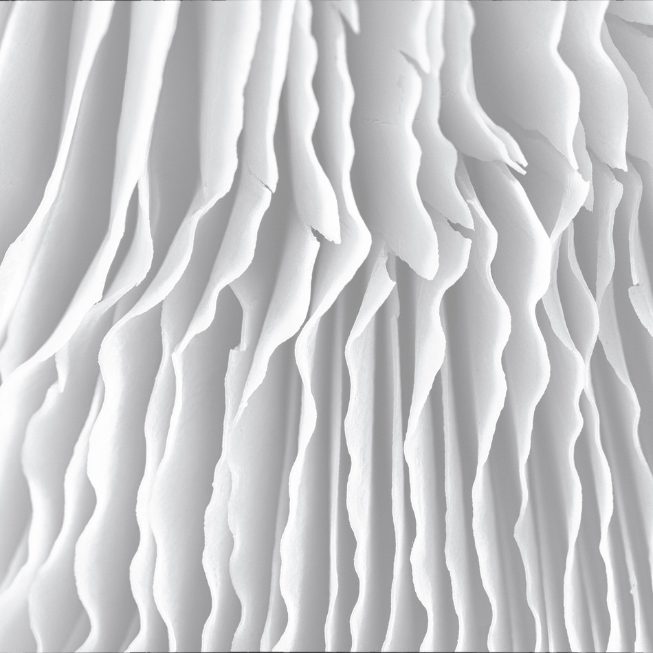 abstract macro