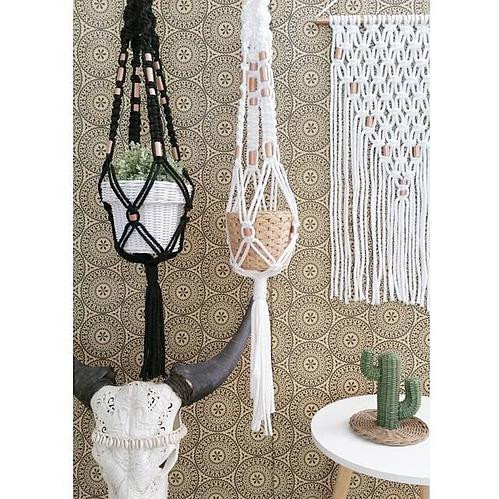 Plant hangers and Wall hanging