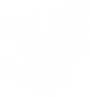 Logo XXXV Edición del Congreso Nacional de Estudiantes de Medicina