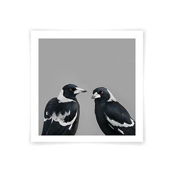 Print_mock_up_Mr_mrs_magpie_web.jpg