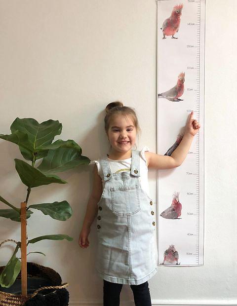 Sid the Galah, Children's Height Chart