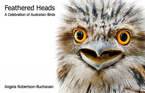 Limited Edition Book - Feathered Heads, Edition 2
