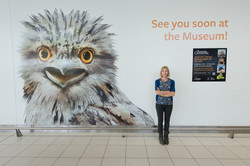 Adelaide Airport 2013