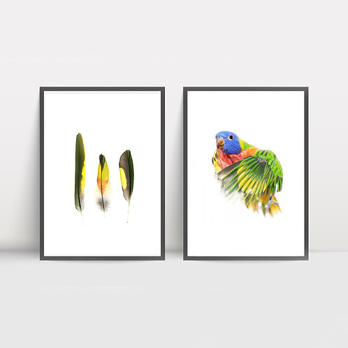 Print Set: Bonny and Feathers