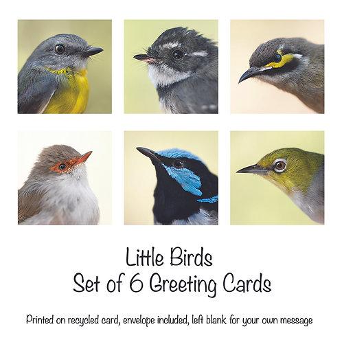 Little Birds - Set of 6 Bird Cards