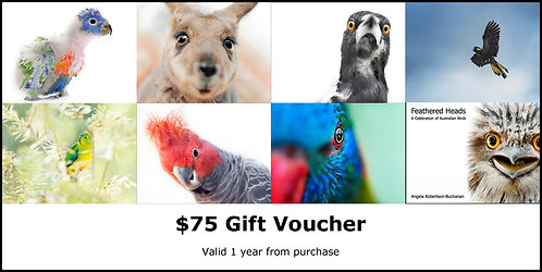 $75 Voucher for online shop