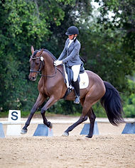 Sarah Lockman Dressage champion DeHavilland