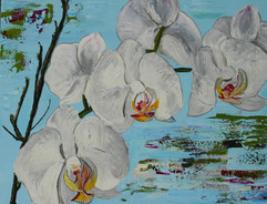 Orchids in Repose