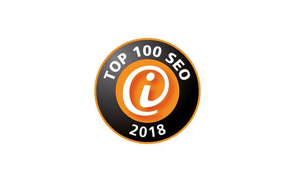 Top-100-SEO-1.jpg