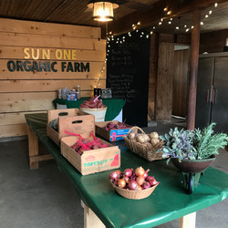 Holiday Farm Store Opening