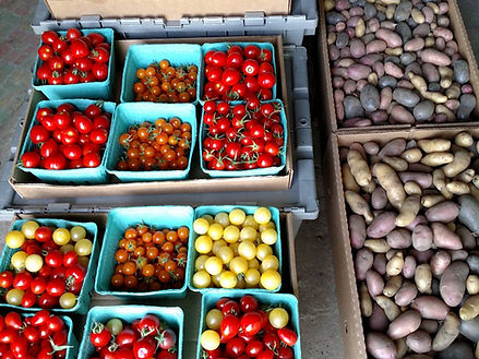 Cherry Tomatoes and Mixd Potatoes