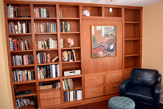 Murphy Bed and Built-In Bookcase