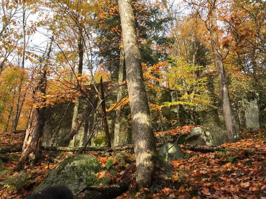 La Villageoise de Mont-Tremblant Trail