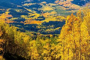fall-steamboat-springs-colorado-overlook