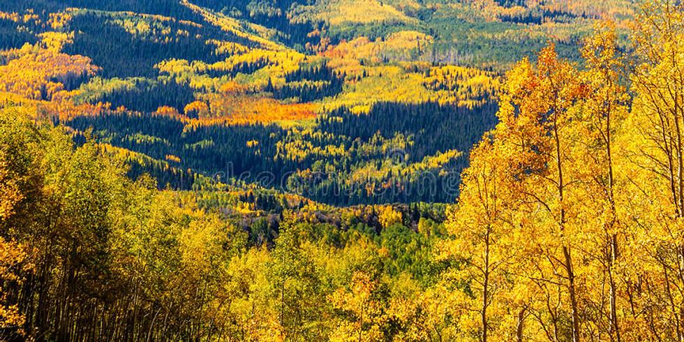 Colorado Poly Weekend #6 (Fall 2021)