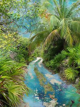 yucatan trail a m.jpg