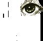 logo_transp_wt.png