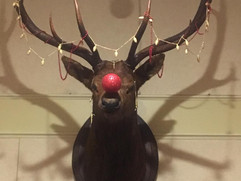 Rudolph the Elk