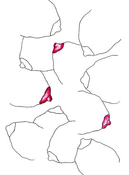 Kamile Dziugaite 'Multi Love'.jpg
