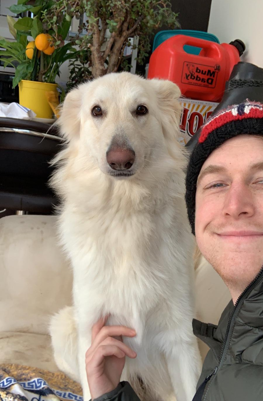 Maggie, the white german shepherd poses for a photo with her owner.
