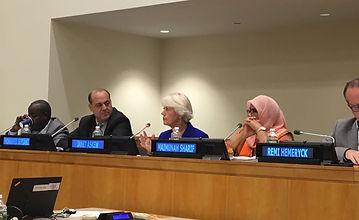 2018-UN-Panel.jpg