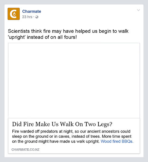 Charmate Fire Made Us Walk Upright post.