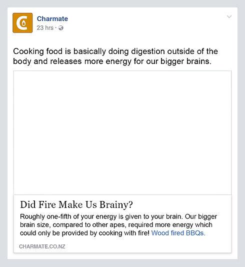 Charmate Fire Made Us Brainy post.jpg