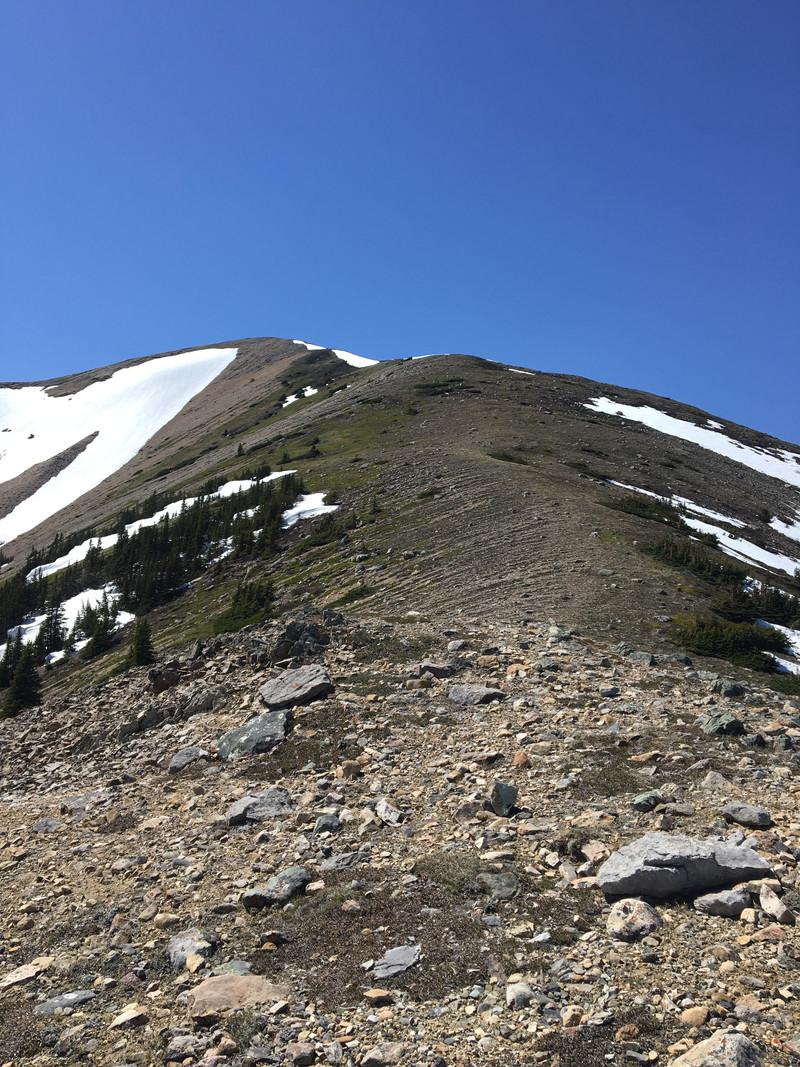 Two o' clock Ridge