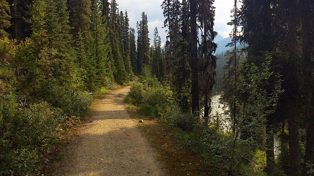 Shadow Lake Trail- Part 3 (Shadow Lake Campground to Red Earth Creek Trailhead)