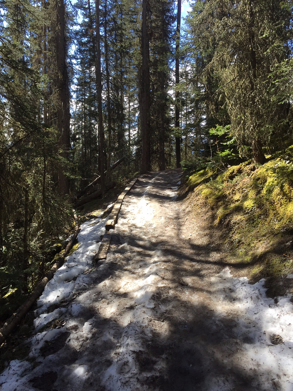 Starting the trail to the Inkpots