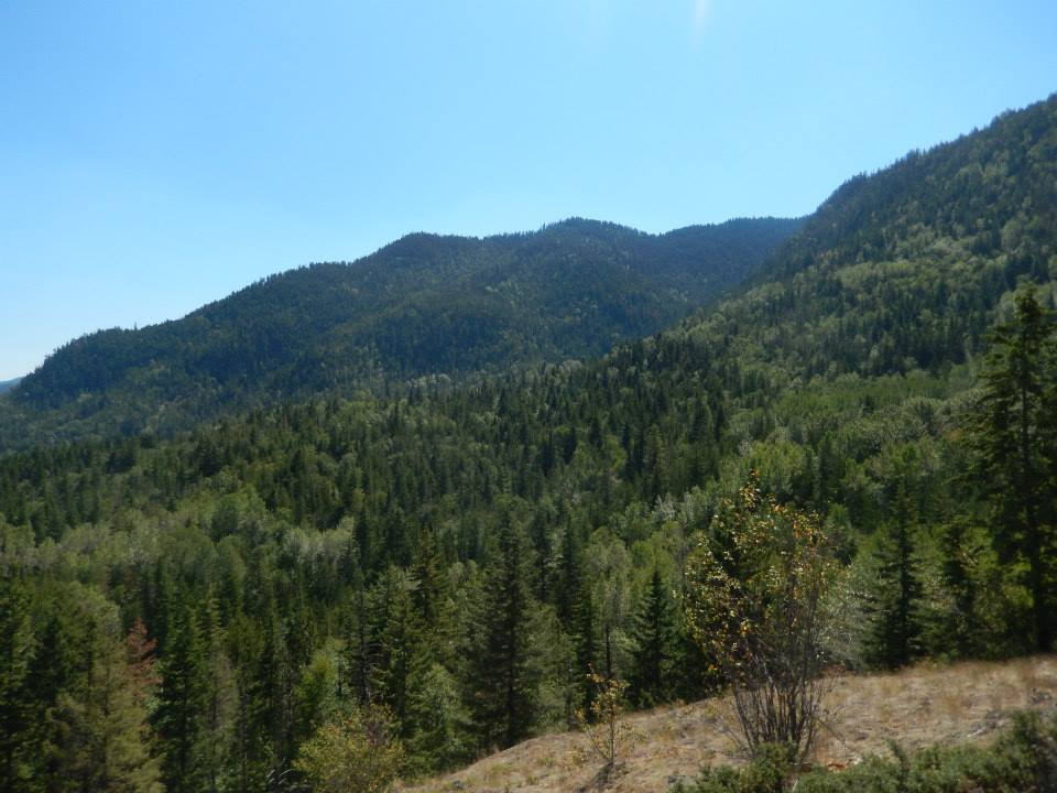 A view of the mountains that stand beside Mount Baldy
