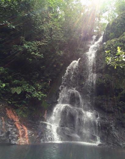 Tiger Fern Waterfall