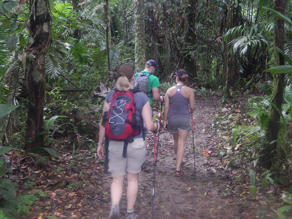 Heading into the jungle