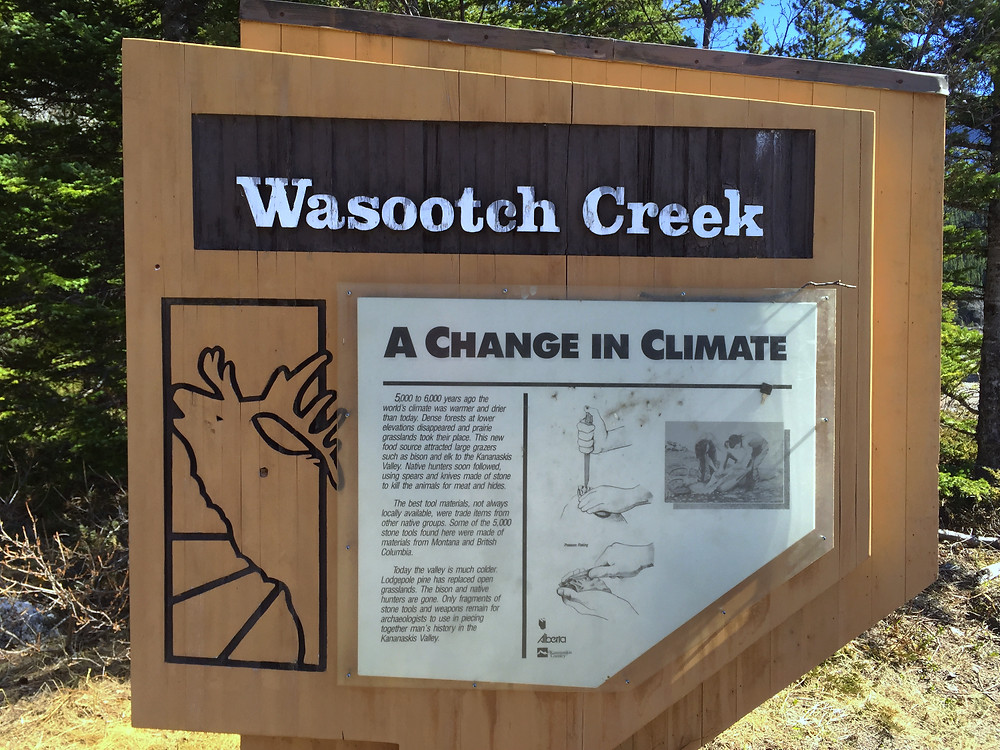 Wasootch Creek information