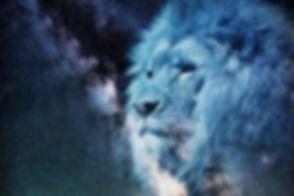 lion-2400168_1280.jpg
