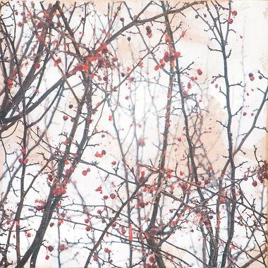 printemps-12.jpg