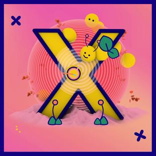 X.mp4