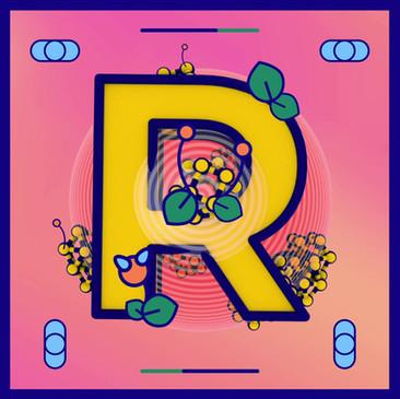 R.mp4