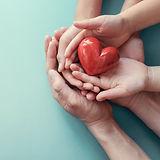 hands holding red heart, heart health, d