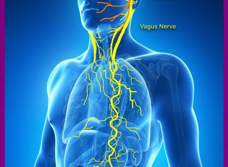 Healing the Vagus Nerve - Exercise 3
