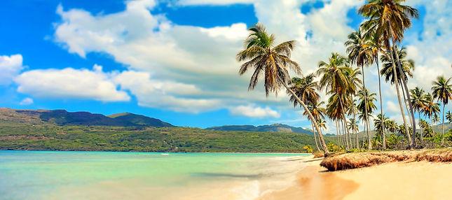beach-1921598.jpg