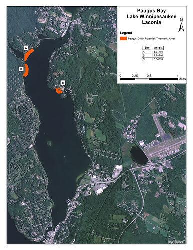 Paugus Bay Map for 2019 Herbicide Bids.j