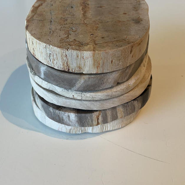 Onderzetters versteend hout