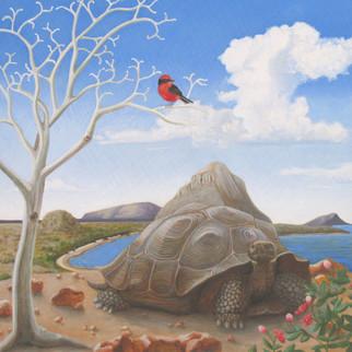 Tortoise and Mountain.jpg