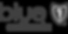 bsc-logo-lg copy.png