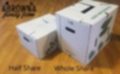 CSA Box graphic.jpg