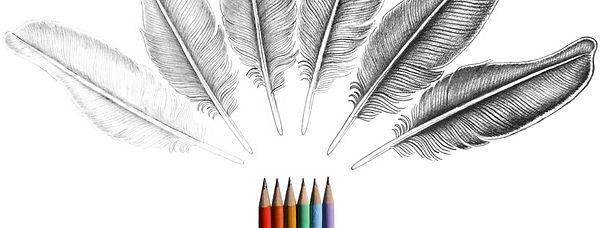 feather fan facebook cover.jpg