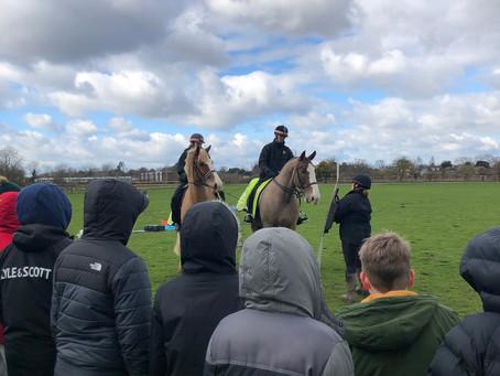 Police Horse Training Yard