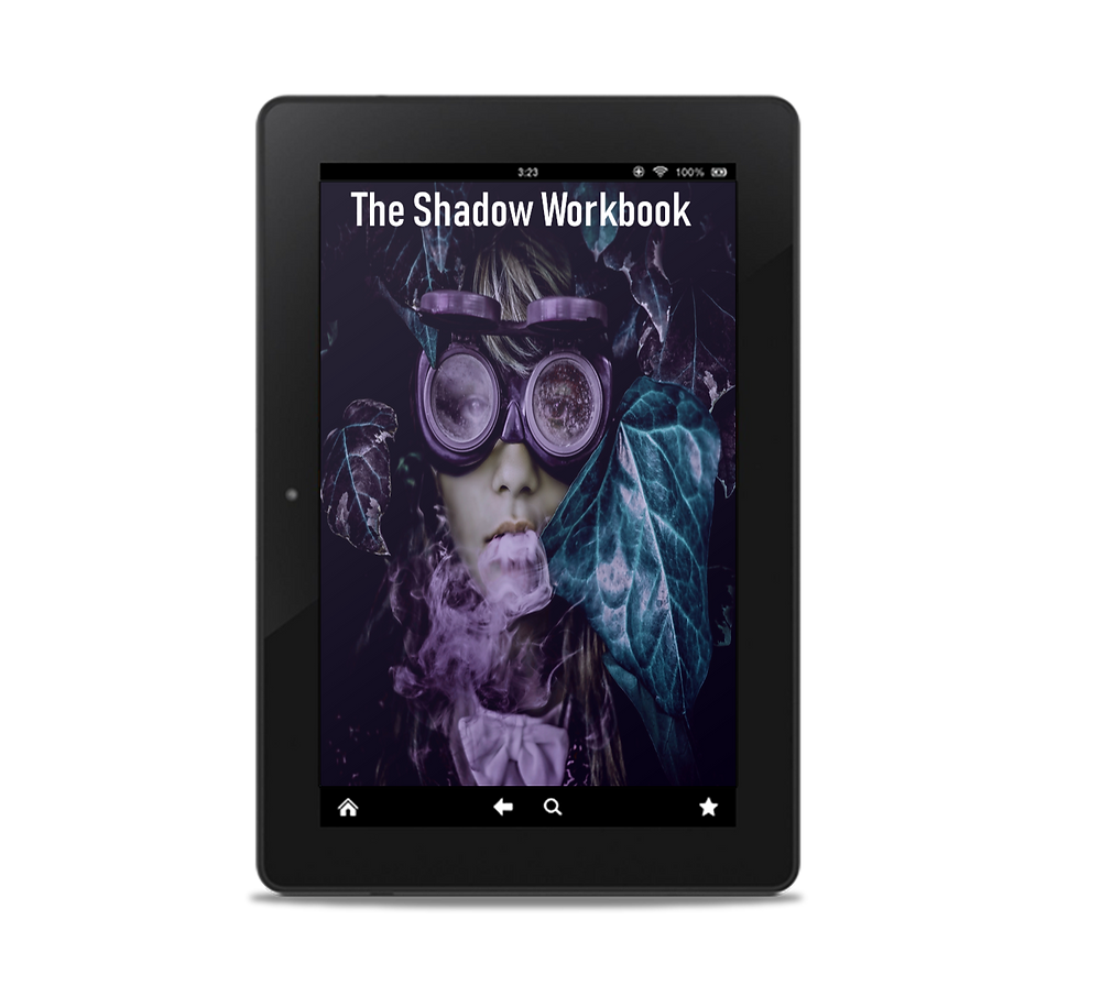 the shadow work book how-to